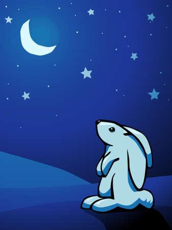 Bunny and sky