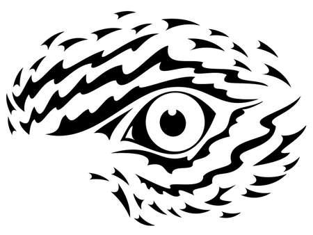 Eagle eye graphic Vector