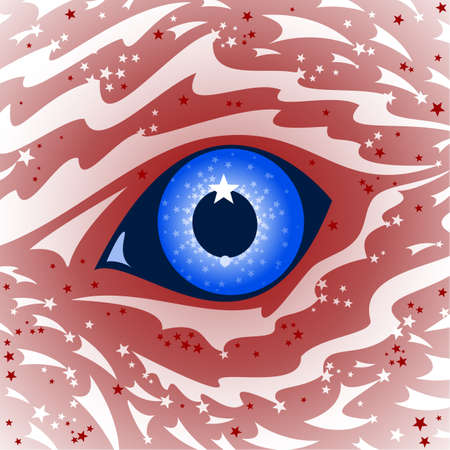 USA Eagle eye