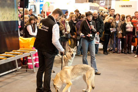 PARIS - FEBRUARY 26: The Paris International Agricultural Show 2012 -  Speech on the wolf