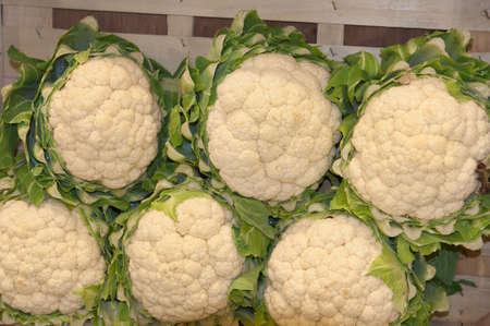PARIS - FEBRUARY 26: The Paris International Agricultural Show 2012 -  cabbage