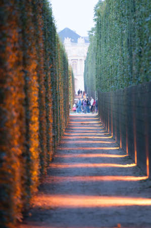 VERSAILLES - JULY 21: Light and Thuya Corridor at The Fountains Night Show on July 21, 2012 in Versailles