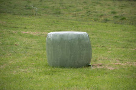 bale of straw into plastic 4