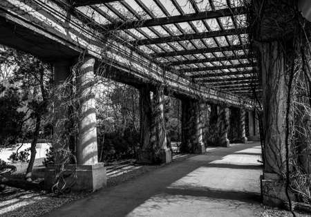 Old Black and White Centennial Hall Pergola Stock fotó