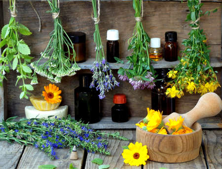 yarrow: bunches of healing herbs - mint, yarrow, lavender, clover, hyssop, milfoil, mortar with flowers of calendula and bottles, herbal medicine