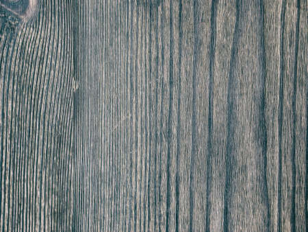 wood panel: Textured wooden background. Texture close up blank for design. Copy space. Stock Photo