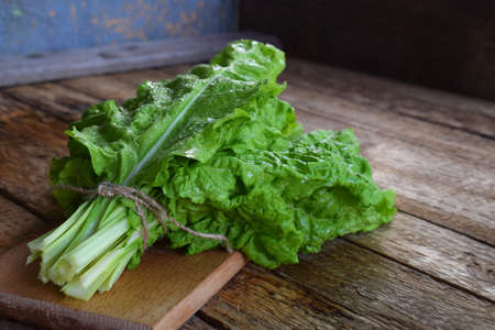 Freshly organic picked green swiss chard on wooden background. Spring green herbs. Stock Photo