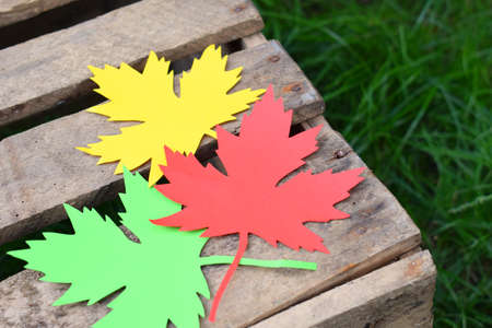 Red, yellow and green paper maple leaf on a wooden box on the grass. Hello Autumn concept. Copy space