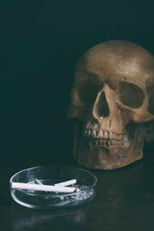 Human skull and cigarette on dark background. Stop smoking concept. Nicotine addiction and bad habits.