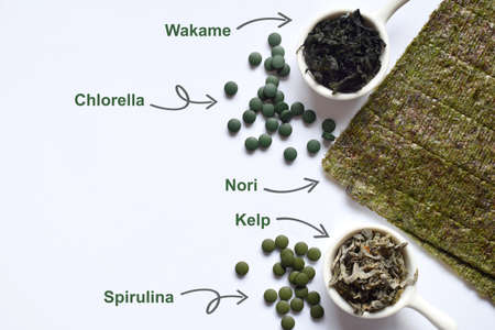 Dried seaweed: nori, wakame, kelp spirulina chlorella Superfood Healthy food