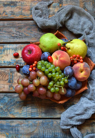 The autumn still life for thanksgiving with autumn fruits and berries on wooden background - grapes, apples, plums, viburnum, dogwood. Raw food. Copy space Stock Photo