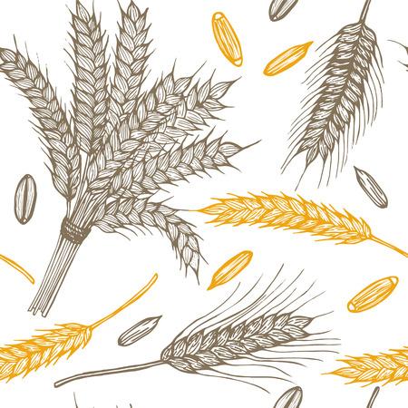 oat field: Wheat Ears Hand Draw Sketch Background Pattern. Vector illustration