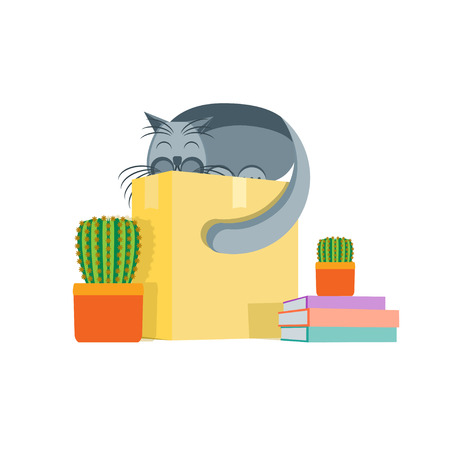 moving box: Cardboard Box and a Cat. Concept Of Moving. Vector illustration