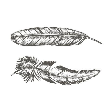 Plumes Set main Dessinez Sketch Trendy Tattoo Modèle Boho ou le style ethnique. Vector illustration Vecteurs
