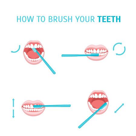 Cómo cepillarse los dientes. Cepillado de dientes. Cartel con el manual de instrucciones. Ordenar movimientos correctos. ilustración vectorial