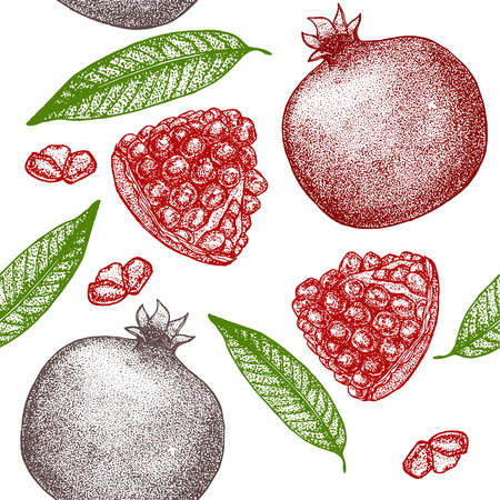 Pomegranate with Seeds and Leaf Hand Draw Sketch Background Pattern. Vector illustration