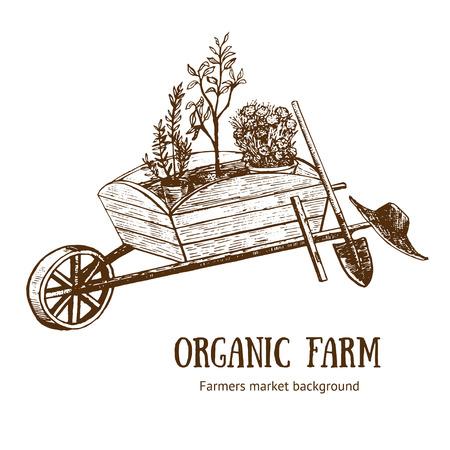 Cesta de jardín, carretilla o carro Organic Farm Hand Draw Sketch. Ilustración del vector