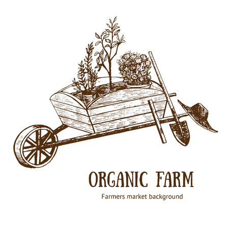 Garden Cart, Wheelbarrow or Trolley Organic Farm Hand Draw Sketch. Vector illustration