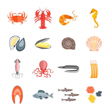 Set of Seafood for Menu Your Kitchen. Flat Design Style. Vector illustration