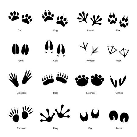 vogelspuren: Schwarz verschiedenen Tier-und Vogel-Silhouetten Tracks mit Namen Set. Vektor-Illustration