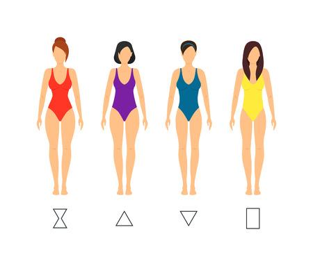 Cartoon Female Body Shape Types Woman Anatomy Figure Constitution