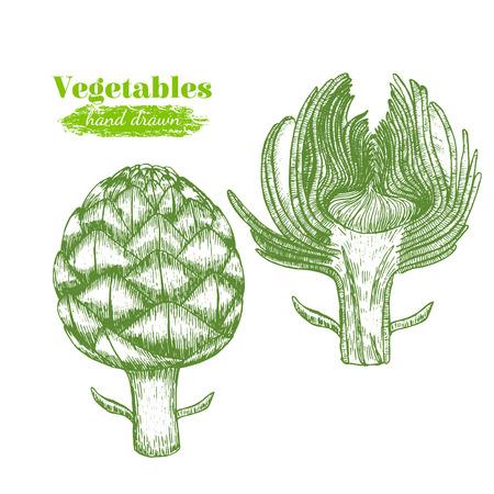 Artichoke Hand Draw Sketch. Vector Illustration