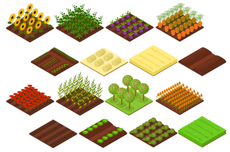 seedlings: Farm Set Isometric View. Vector