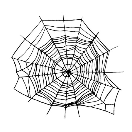 Spider Web. Vector