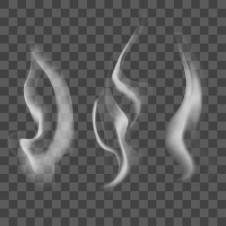 vapor trail: Realistic Steam or Smoke Texture Set. Vector