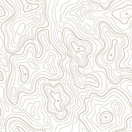 geodesy: Landscape Geodesy Topographical Map Line Background. Vector