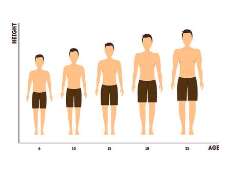 Wysokość i wiek pomiaru wzrostu od chłopca do człowieka. Wektor