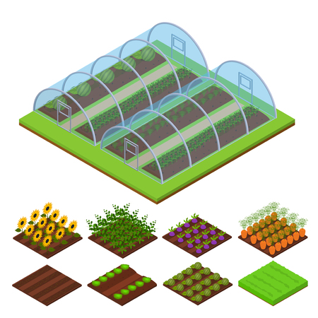 Greenhouse Isometric View. Vector