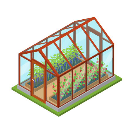 Kweekhuis Met Bloemen En Planten Isometrische Uitzicht. Vector Illustratie