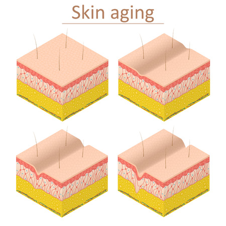 Skin Aging Set Isometric View. Vector