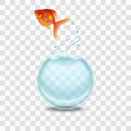 Gold Fish and Aquarium on a Transparent Background. Vector