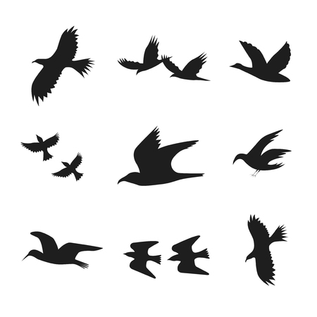 starling: Silhouette Black Fly Flock Of Birds. Vector