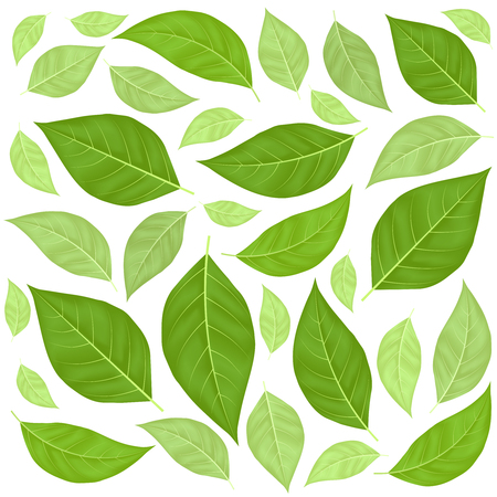 Green Leaves Pattern Background. Vector Ilustracja