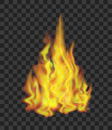 Realistic bright fire flames on transparent light effect for web design.