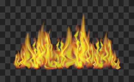 Realistic bright fire flames line on transparent light effect for design.