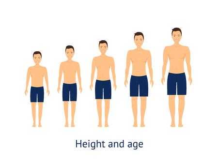 Estágio de altura e idade de crescimento, de menino para homem, estilo de design plano. Ilustração vetorial