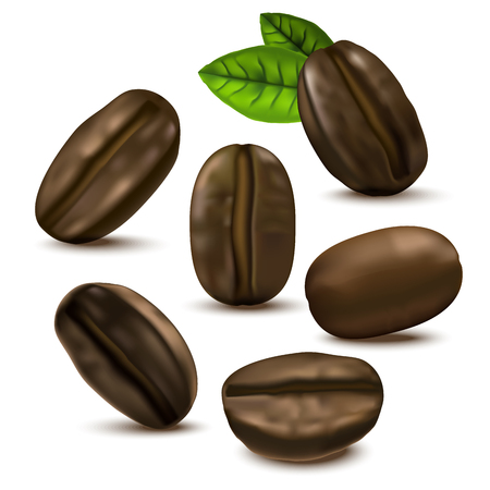 Realistic 3d Coffee Various Beans Set with Leaves.