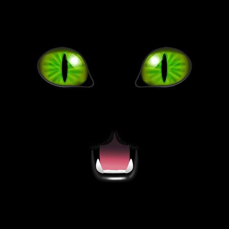 Realistic 3d Cat Face on a Black Background. Vector Illustration