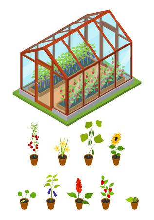 花や植物の等角投影ビューが付いている温室。ベクトル