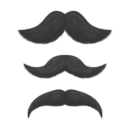 Realistic Detailed 3d Black Fake Mustaches. Vector