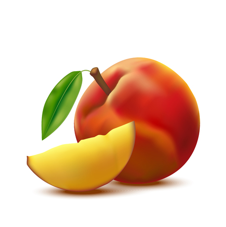 Realistic Detailed 3d Whole Peach Fruit and Slice. Vector Çizim