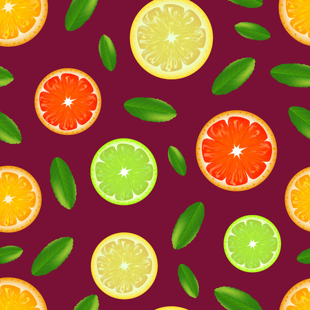 Realistic Detailed Citrus Background Pattern. Vector Illustration