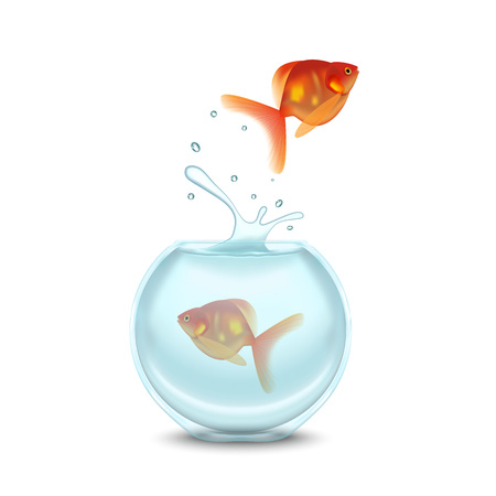 Gold Fish and Aquarium on a White Background. Vector Illustration