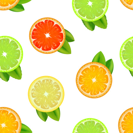 Realistic Detailed Citrus Background Pattern. Vector Stock Photo