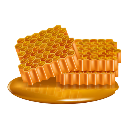 Realistic Detailed of 3d Honey Combs Set.  イラスト・ベクター素材