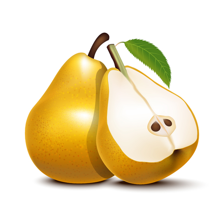Realistic Detailed 3d Whole Pear and Slices Fresh Organic Ripe Vitamin Sweet Fruit for Farm or Shop. Vector illustration.
